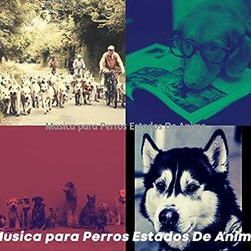 Musica para Perros Estados De Animo