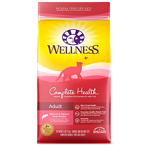 Wellness Complete Health Natural Dry Cat Food, 6-Pound Bag Now $6.90