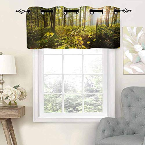 Hiiiman Blackout Curtain Valances, Thermal Insulated Short Grommet Curtain Panels Trees Sun Rays in Woods Foliage Greenery Scenic Outdoors Tranquil Untouched, Set of 2, 42'x36' for Kitchen Bathroom