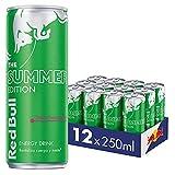 Red Bull Bebida Energética, 12 Latas De 250s, S, Fruta Del Dragon, 3000 Mililitro