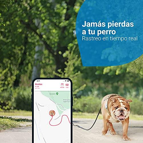 Tractive Collar GPS Perros (2021), Conozca la ubicación de su Perro, Localización y Seguimiento de Actividad Las 24 h
