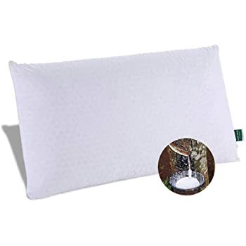 SWEESLEEP Medium Soft Natural Talalay Latex Foam Bed Pillow Eco-Friendly for Sleeping with 100% Cotton Zippered Cover, Queen Size (28 x16 x5 Inch)