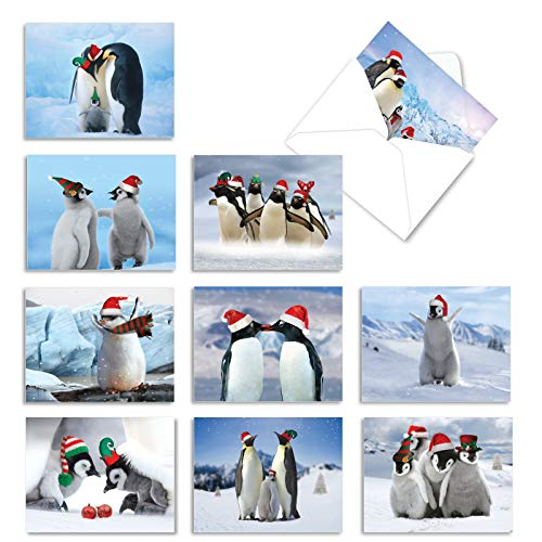The Best Card Company - 10 Holiday Note Cards for Christmas - Festive Bulk Assortment, Boxed Notecards with Envelopes (4 x 5.12 Inch) - Penguins and Greetings M2951XSG
