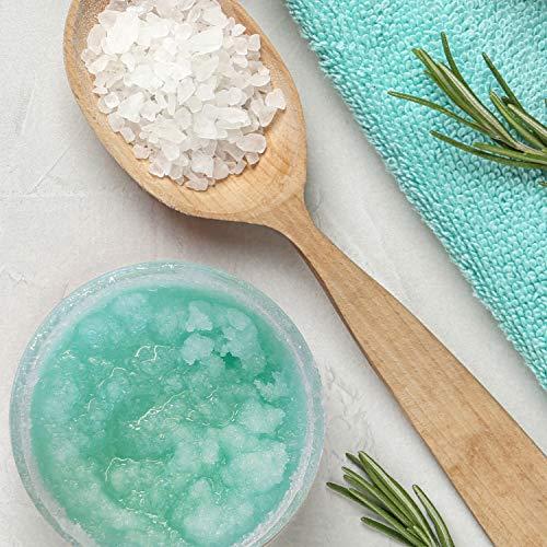 PraNaturals Erfrischendes Körperpeeling Body Scrub aus dem Toten Meer 500g 100% Bio nahrhaftes Hautpeeling Salzpeeling reich an natürlichen Mineralstoffen für alle Hauttypen, mit Mango & Kiwifruchtöl