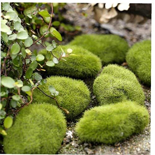 Micro Paisaje De La Hierba Verde Decoración Figuras Miniatura para Mini Bricolaje Hada del...
