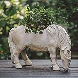 GPWDSN Macetero de Caballos para Exteriores, Maceta de Plantas suculentas de jardín Creativo, Novedad Vintage Bonsai Escultura Estatua Figuras Maceta Decoración de Adorno de balcón,