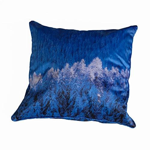 Coussin 60 x 60 cm déhoussable - Thème Neige et Montagne - couleurs: Bleu et Blanc - Photo d'art by Isabelle Delbecque
