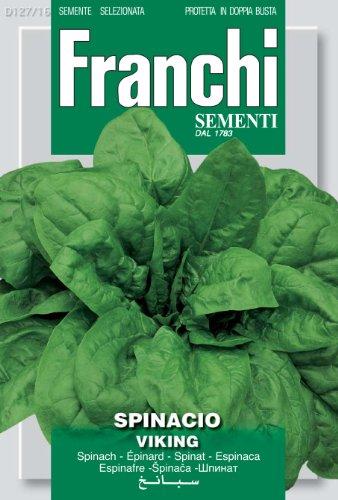 Seeds of Italy Franchi Graines d'épinard Viking