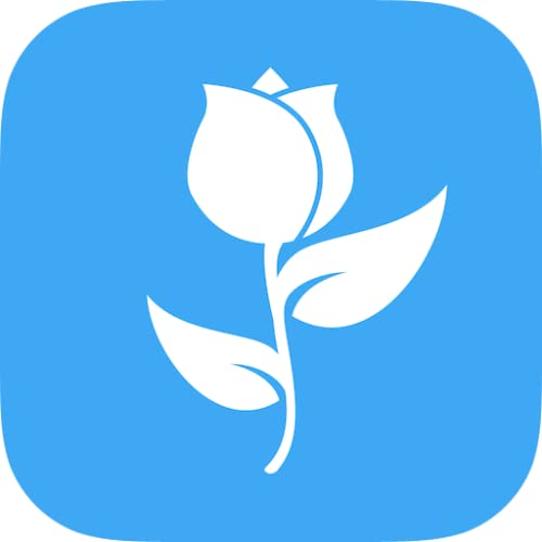 Fleurs - livraison rapide, commande rapide et facile