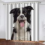 LLKKCX Animal Cortinas Opacas 3D Border Collie Impresión - Resistente al Calor...