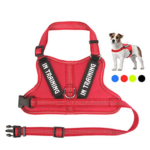 NOYAL in Training Dog Harness, Soft Breathable Mesh Dog Vest Harness - Adjustable 3M Reflective Outdoor Pet Vest with 2 Removable Patches for Small Medium and Large Dogs
