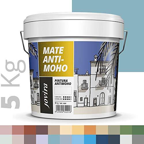 PINTURA ANTIMOHO, evita el moho, resistente a la aparición de moho en paredes, aspecto mate. (5 KG, TURQUESA)