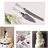 Adorox Wedding Cake Knife and Server Set Acrylic Stainless Steel Faux Crystal...