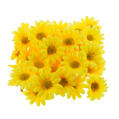 Top 18 daisy yellow flowers for 2021