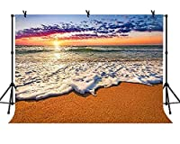 lovedomi 9x6ft 秋の海辺の自然風景日没の夕暮れの海水泡写真背景写真スタジオブースの背景家族休暇誕生日パーティースタジオ小道具写真ビニール素材