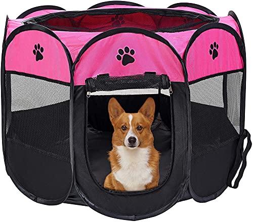 Casa Perro marca Studio Pets