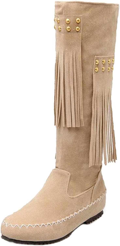 Women's Fashion Low Heel Fringe Boots Pull On