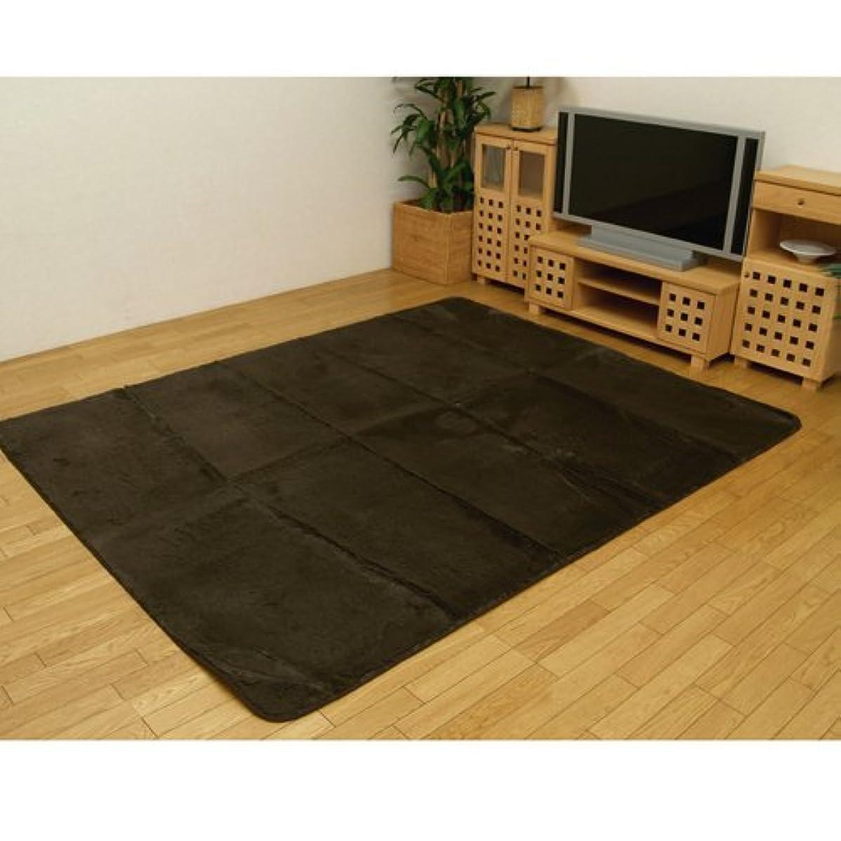 戻る教養がある平野イケヒコ ラグ カーペット 4畳 無地 フィラメント糸 『フィリップ』 ブラウン 約200×300cm ホットカーペット対応