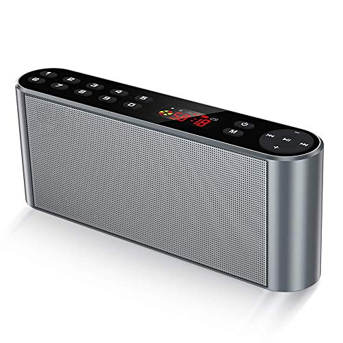 ZJZ Portabler Wireless Speaker, Bluetooth Lautsprecher, Mobiler Digital FM Radio, MP3 Player mit Kraftvollem Bassmit Eingebauten Mikrofon, Dualen Basstreibern