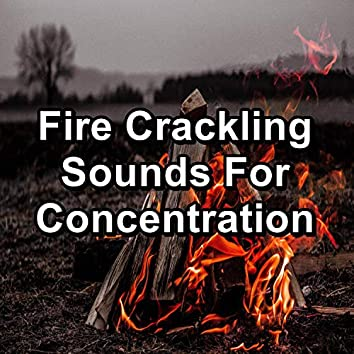 Fire Crackling Sounds For Concentration