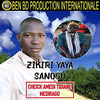 Cheick Amedi Tidiane Wedirago