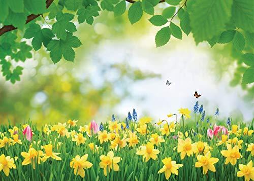 WYGG 7x5FT Fondo de Vinilo Fondo de Hierba de Primavera Fondo de Flor de Hierba Fondo de Excursión Fondo de Fotografía de Pared de Flores Fondo de Estudio Fondo de Exterior CP-337
