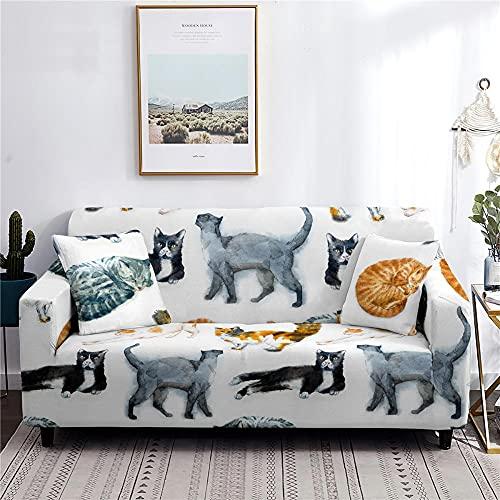 Copridivano 1 Posti Stampa Animale Gatto Copridivani Elasticizzati Universali,Copri Divano Moderne per Soggiorno, per Proteggere Il Divano, Copridivano per Cani e Gatti