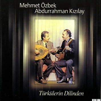 Türkülerin Dilinden