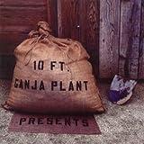 Songtexte von 10 Ft. Ganja Plant - Presents