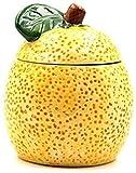 CSD Claro condimento Caja, Caja de almacenaje de cerámica del condimento condimento Especia sacude condimento Caja con Tapa Cuchara de la porción Juego de 3 Tipo de Pomelo