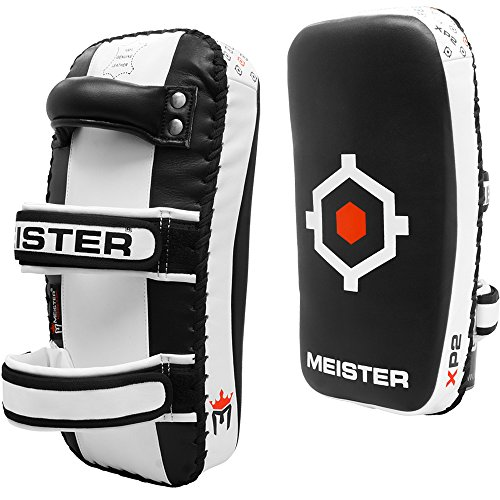 Meister Thai Pads Muay Thai training
