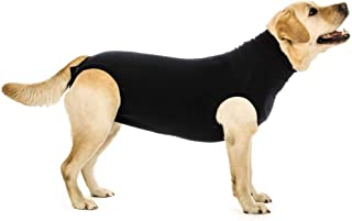 Best surgical suit for dogs Reviews