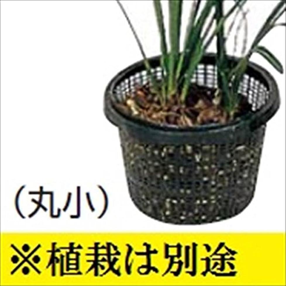 コインランドリーモンクめ言葉タカショー ウォーターガーデン 池用植物カゴ (丸小) IB-14