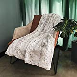 OFADD Faux Fur Throw Blanket for Sofa Mink Plush Leopard Throws Comfortable Cozy Warm for Bed and Couch Decor Throws 52x63 Inches