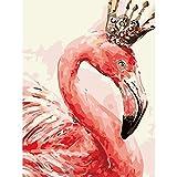 pintar por numeros adultos Flamenco Paint by Numbers diy Cuadros por Numeros Para Adultos Niños Principiantes Pigmento Acrílico, Sin Marco40 x 50 cm