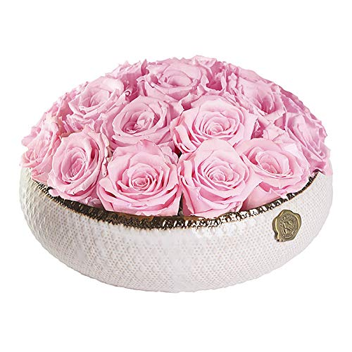 GIFTS PLAZA (D) Luxury Long Lasting Roses in a Box, Preserved Flowers Soho 11'' (Blush)