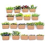 KingbeefLIU Simulation Pflanze Blumentopf Modell Figur Miniatur Puppenhaus Garten Zubehör Mini...