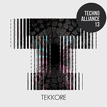 Techno Alliance 13