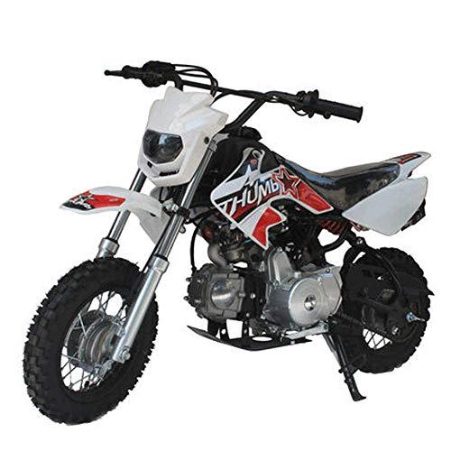 90GJ Mountain kleine Offroad-Motorrad 125ccm Zweirad Erwachsenen High Race Doppel Veranstaltungsort Cross Country weiß