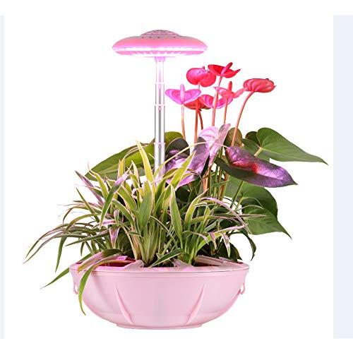 AOKARLIA Pflanzenlampe Pflanzenlicht LED UFO Hydroponic Lampe 17W Tischlampe Intelligentes Pflanzenlicht Alarm, Das ganze Spektrum 5 Betriebsarten Höhenverstellung Ventilator Mit Nährboden,Rosa