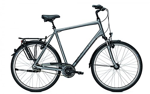 Raleigh Unico XXL 8-Gang Nexus RT City Bike 2016 (Grau, 28