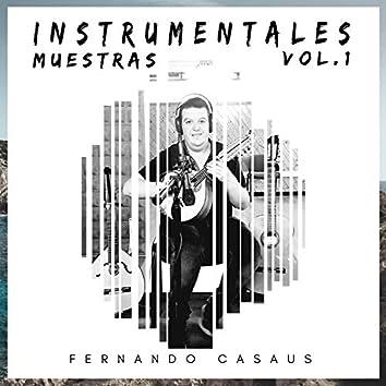 Muestras Instrumentales