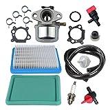 Panari 799868 Carburetor + Tune Up Kit for Briggs and Stratton 498170 497586 497314 698444 498254 497347 497410 496115