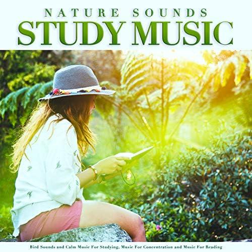 Study Music & Sounds, Studying Music & Einstein Study Music Academy