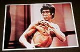 Shogun plakat/poster - Bruce Lee