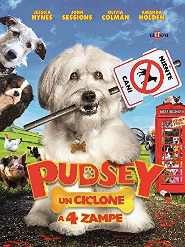 Pudsey - Un ciclone a 4 zampe