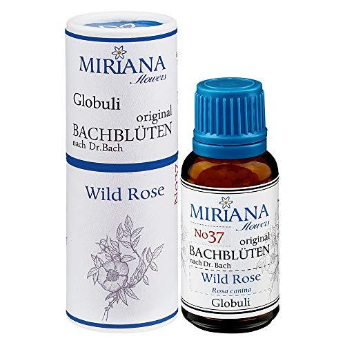 MirianaFlowers Wild Rose 20g Bachblüten Globuli