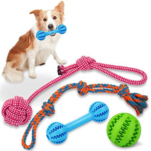 Wimypet 4PCS Hund Kauspielzeug, Hundeball, HundSpielzeug Seil für Zahnreinigung, Welpenspielzeug Hundefutter Treat Feeder, Interaktives Hundeseile Übung, Spiel IQ Training Kleine Mittlere Hunde