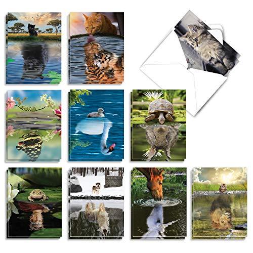 The Best Card Company - 20 Assorted Bulk Animal Cards Boxed (4 x 5.12 Inch) (10 Designs, 2 Each) - Aspirations AM7076OCB-B2x10