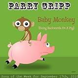 Baby Monkey (Going Backwards On A Pig) - Single